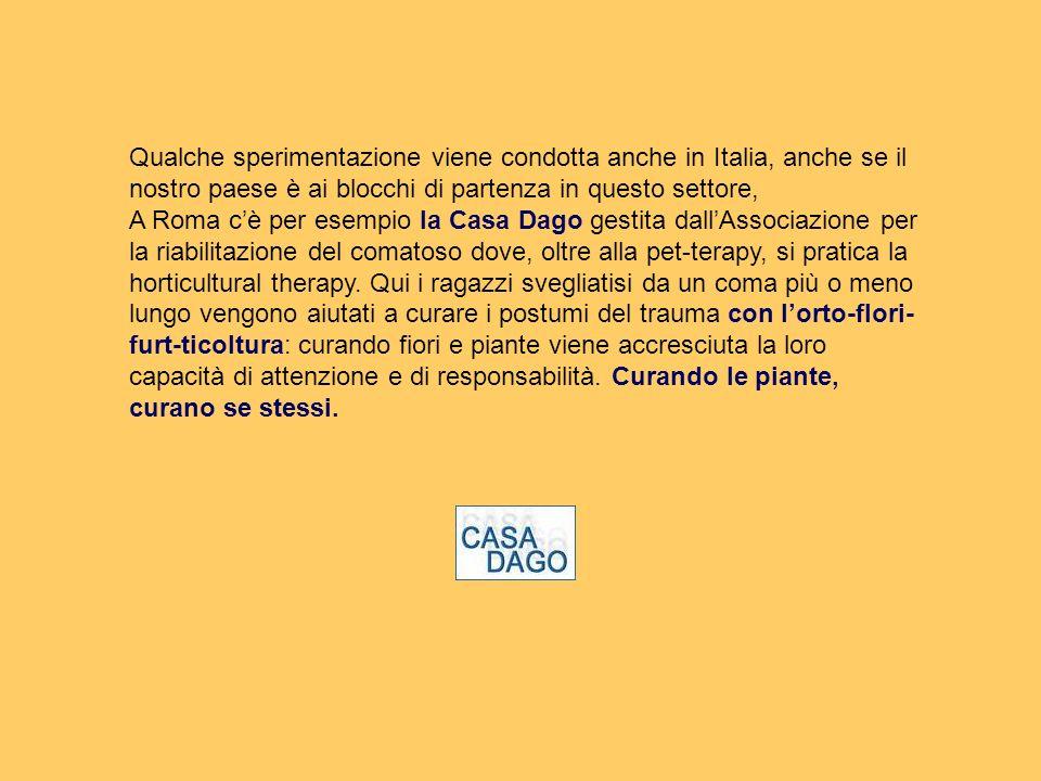 Qualche sperimentazione viene condotta anche in Italia, anche se il nostro paese è ai blocchi di partenza in questo settore, A Roma cè per esempio la