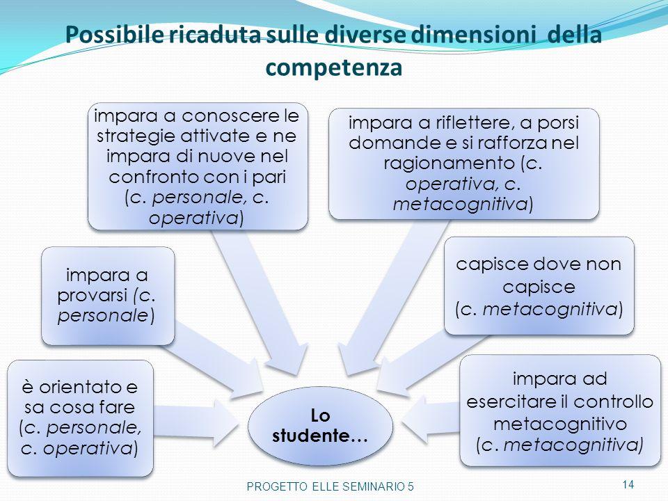 Possibile ricaduta sulle diverse dimensioni della competenza Lo studente… è orientato e sa cosa fare (c. personale, c. operativa) impara a provarsi (c