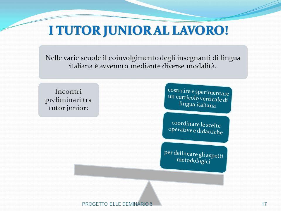 Nelle varie scuole il coinvolgimento degli insegnanti di lingua italiana è avvenuto mediante diverse modalità. Incontri preliminari tra tutor junior:
