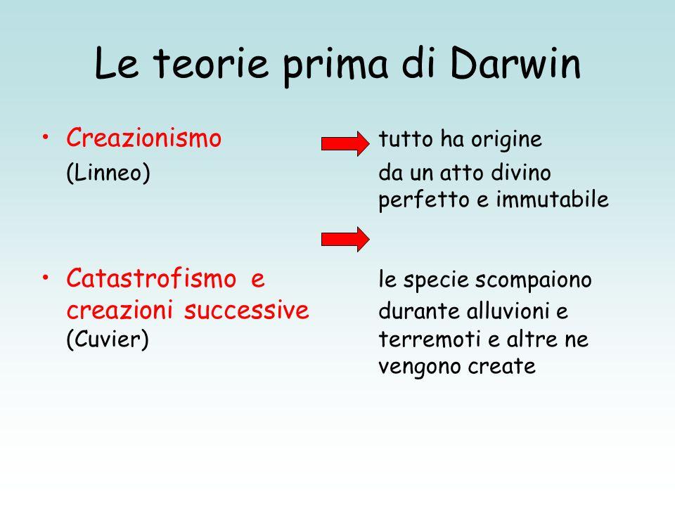 Le teorie prima di Darwin Creazionismo tutto ha origine (Linneo)da un atto divino perfetto e immutabile Catastrofismo e le specie scompaiono creazioni