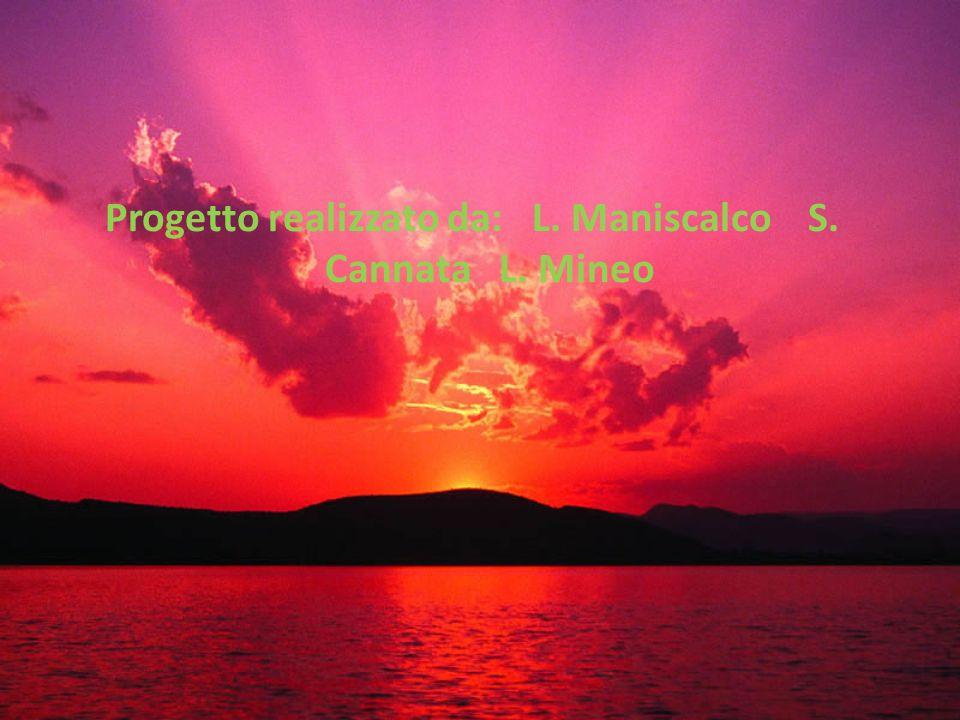 Progetto realizzato da: L. Maniscalco S. Cannata L. Mineo