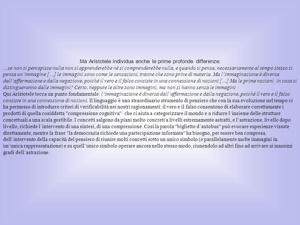 Da un punto di vista neurologico però la maturazione dei processi linguistici non è strettamente correlata a quella delle capacità concettuali.