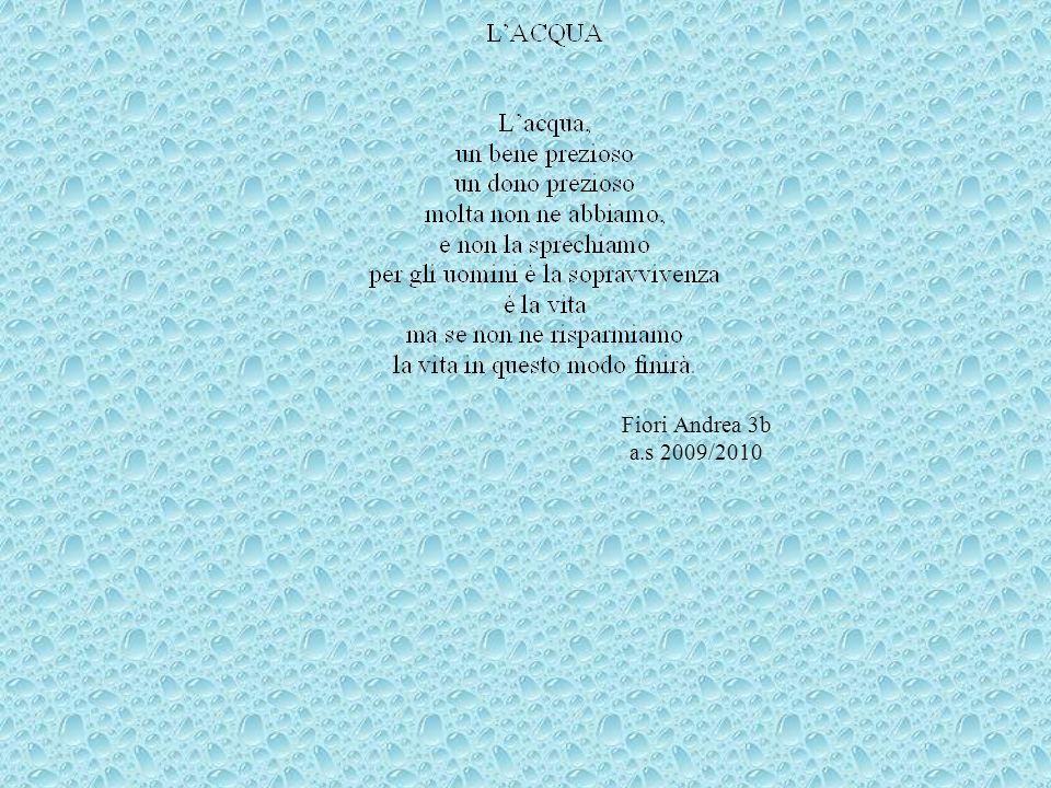 Fiori Andrea 3b a.s 2009/2010
