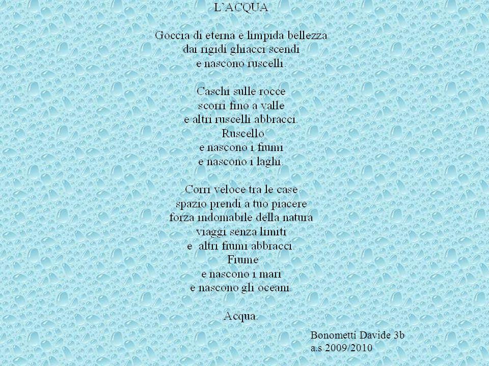 Bonometti Davide 3b a.s 2009/2010