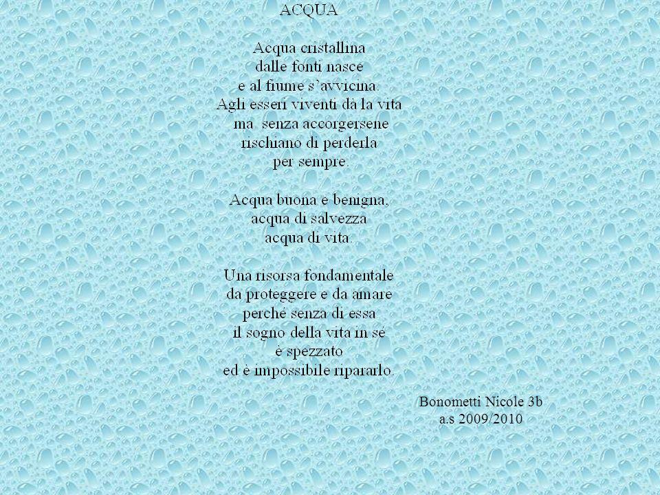 Bonometti Nicole 3b a.s 2009/2010