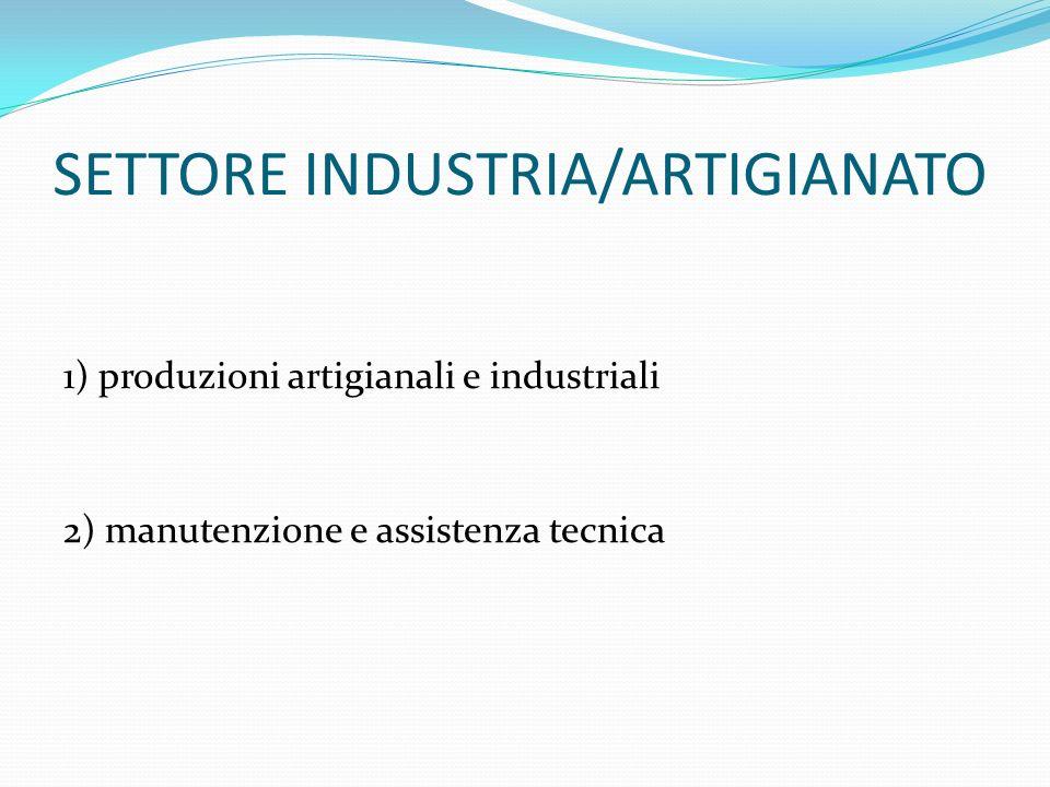 SETTORE INDUSTRIA/ARTIGIANATO 1) produzioni artigianali e industriali 2) manutenzione e assistenza tecnica