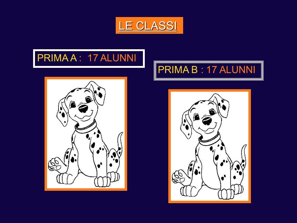 LE CLASSI PRIMA A : 17 ALUNNI PRIMA B : 17 ALUNNI