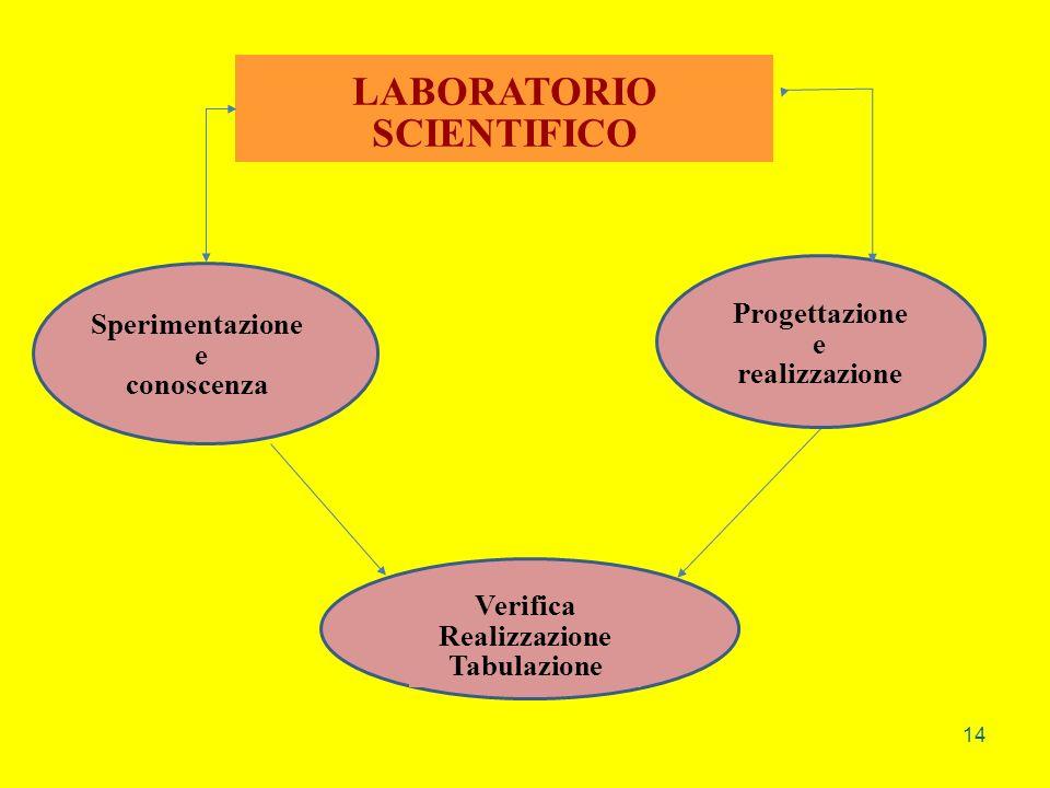 14 LABORATORIO SCIENTIFICO Progettazione e realizzazione Sperimentazione e conoscenza Verifica Realizzazione Tabulazione