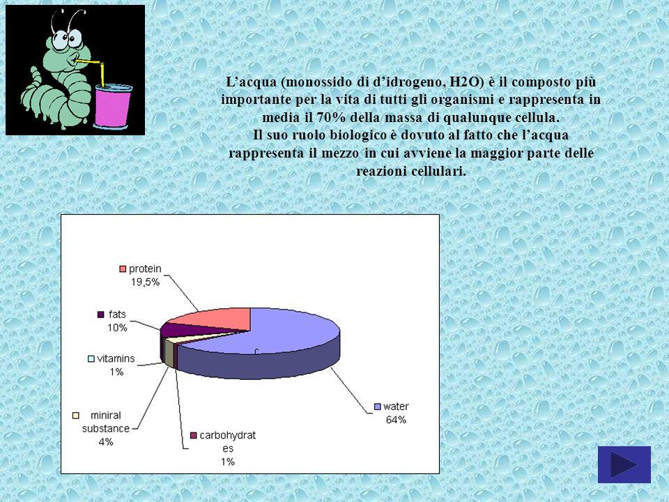 Lacqua (monossido di didrogeno, H2O) è il composto più importante per la vita di tutti gli organismi e rappresenta in media il 70% della massa di qual