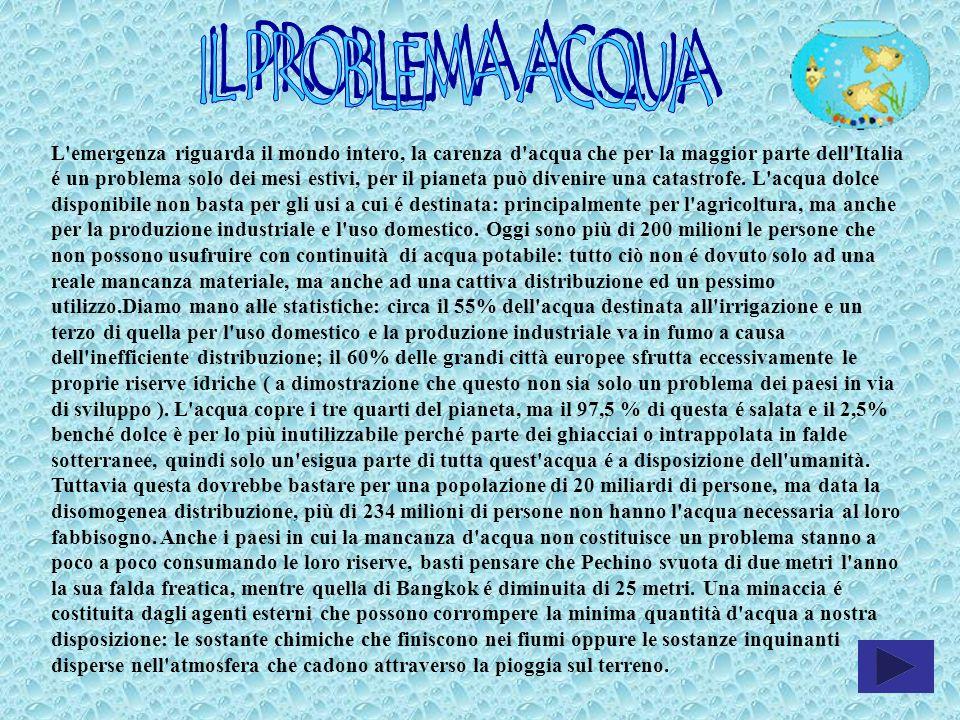 L'emergenza riguarda il mondo intero, la carenza d'acqua che per la maggior parte dell'Italia é un problema solo dei mesi estivi, per il pianeta può d