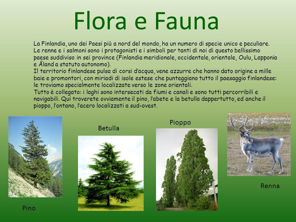 Flora e Fauna La Finlandia, uno dei Paesi più a nord del mondo, ha un numero di specie unico e peculiare. Le renne e i salmoni sono i protagonisti e i
