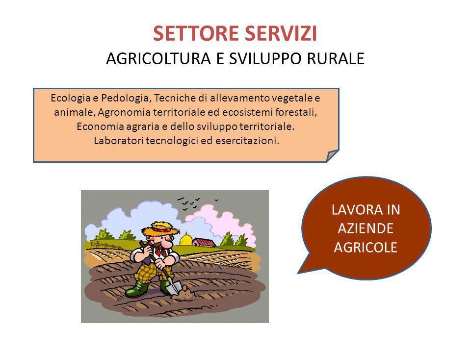 SETTORE SERVIZI AGRICOLTURA E SVILUPPO RURALE LAVORA IN AZIENDE AGRICOLE Ecologia e Pedologia, Tecniche di allevamento vegetale e animale, Agronomia t