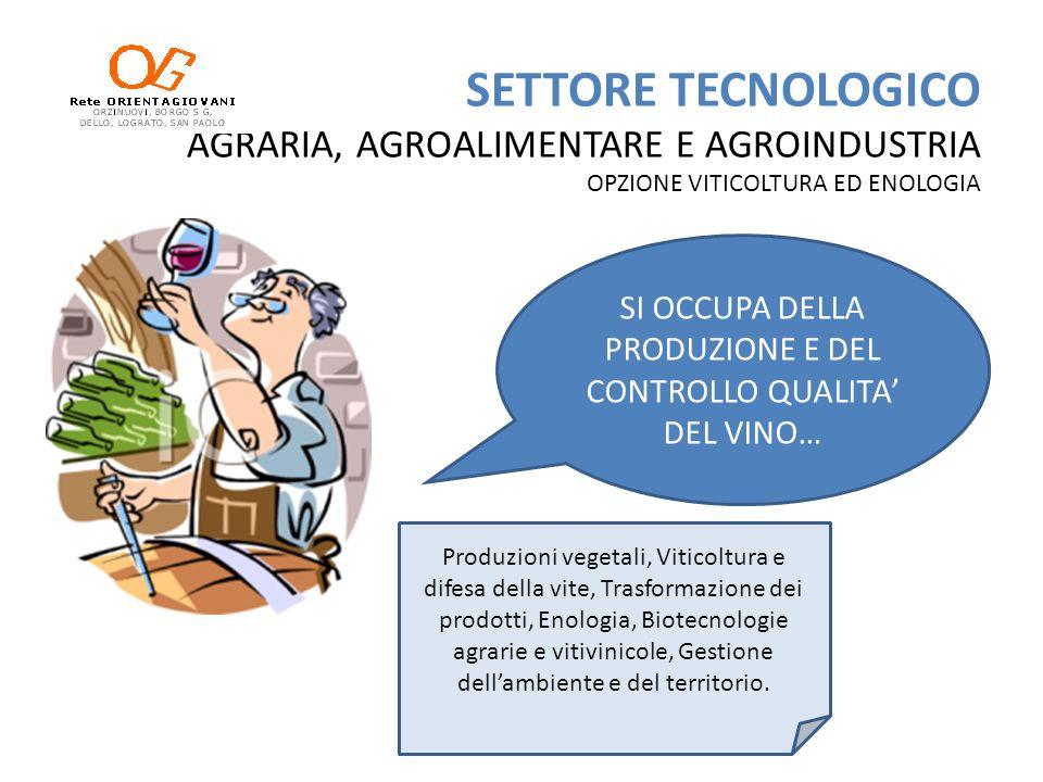 SETTORE TECNOLOGICO AGRARIA, AGROALIMENTARE E AGROINDUSTRIA OPZIONE VITICOLTURA ED ENOLOGIA SI OCCUPA DELLA PRODUZIONE E DEL CONTROLLO QUALITA DEL VIN