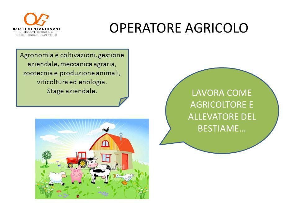 OPERATORE AGRICOLO LAVORA COME AGRICOLTORE E ALLEVATORE DEL BESTIAME… Agronomia e coltivazioni, gestione aziendale, meccanica agraria, zootecnia e pro