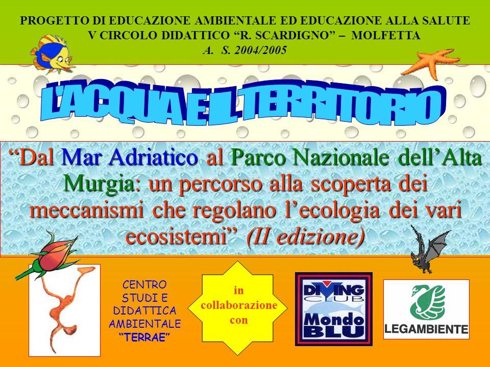 Dal Mar Adriatico al Parco Nazionale dellAlta Murgia: un percorso alla scoperta dei meccanismi che regolano lecologia dei vari ecosistemi (II edizione) PROGETTO DI EDUCAZIONE AMBIENTALE ED EDUCAZIONE ALLA SALUTE V CIRCOLO DIDATTICO R.