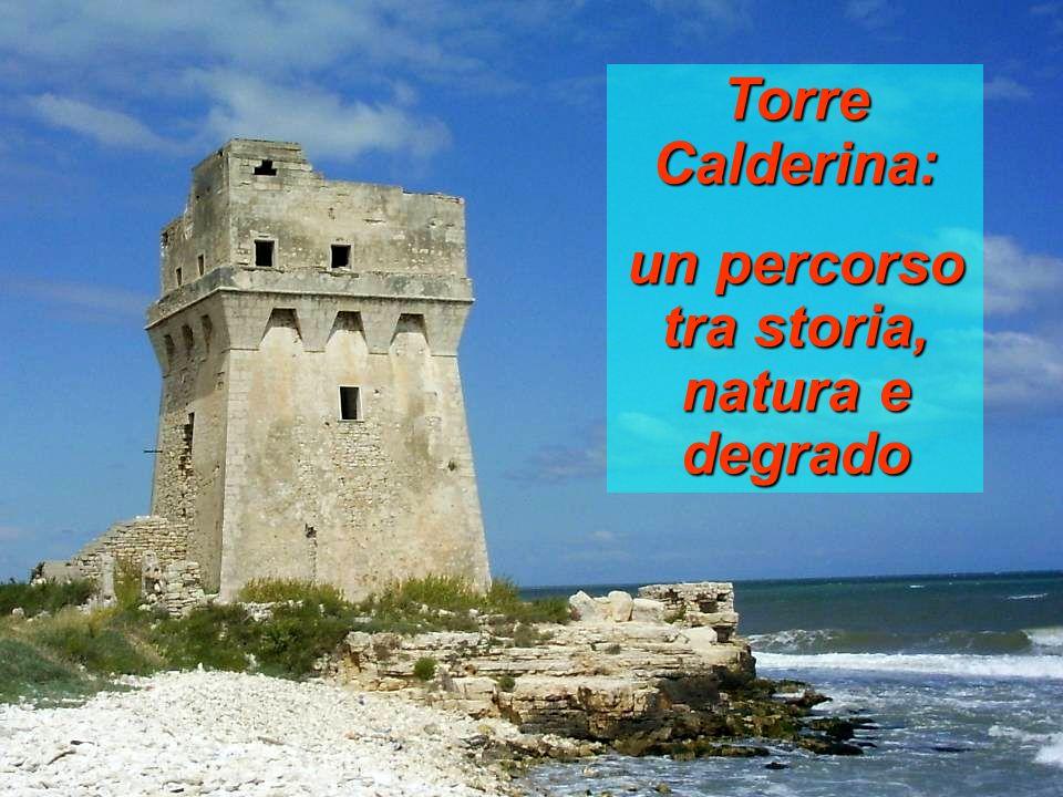 Torre Calderina: un percorso tra storia, natura e degrado