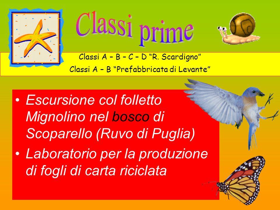 Escursione col folletto Mignolino nel bosco di Scoparello (Ruvo di Puglia) Laboratorio per la produzione di fogli di carta riciclata Classi A – B – C – D R.