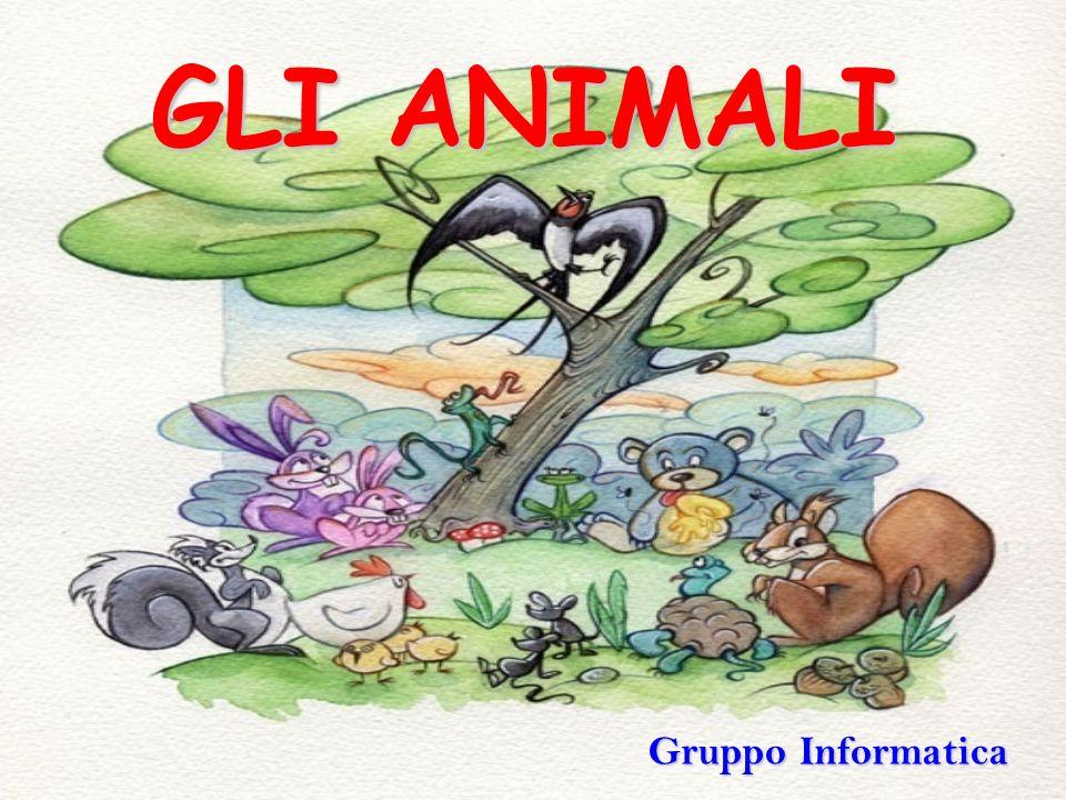 GLI ANIMALI Gruppo Informatica