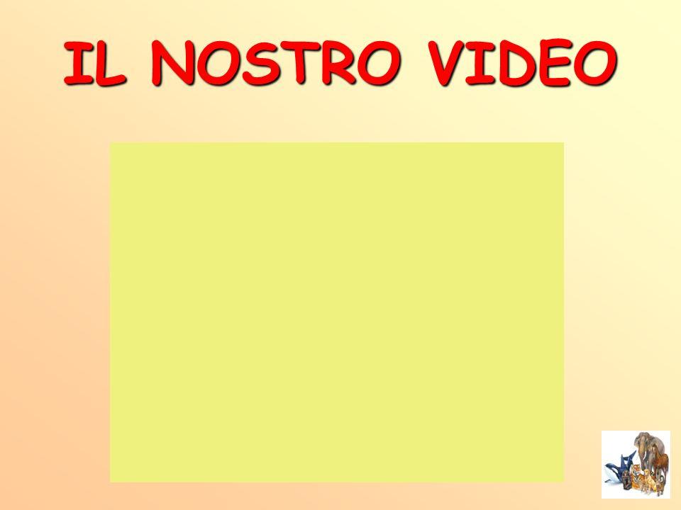 IL NOSTRO VIDEO