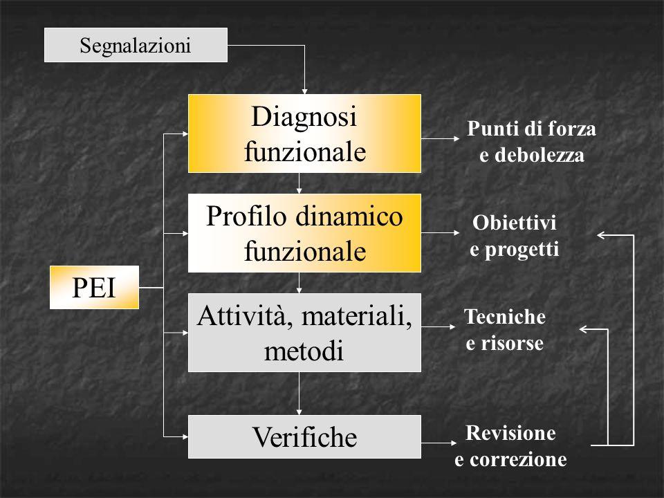 PEI Diagnosi funzionale Profilo dinamico funzionale Attività, materiali, metodi Verifiche Punti di forza e debolezza Obiettivi e progetti Tecniche e risorse Revisione e correzione Segnalazioni