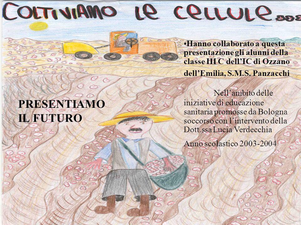 Hanno collaborato a questa presentazione gli alunni della classe III C dellIC di Ozzano dellEmilia, S.M.S. Panzacchi Nellambito delle iniziative di ed