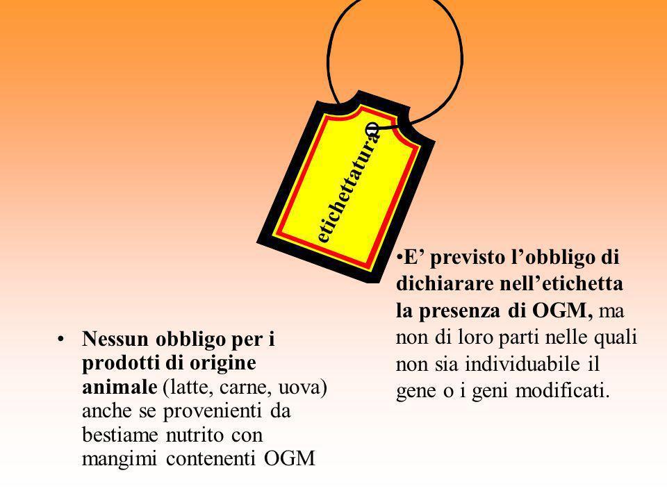 Nessun obbligo per i prodotti di origine animale (latte, carne, uova) anche se provenienti da bestiame nutrito con mangimi contenenti OGM etichettatur