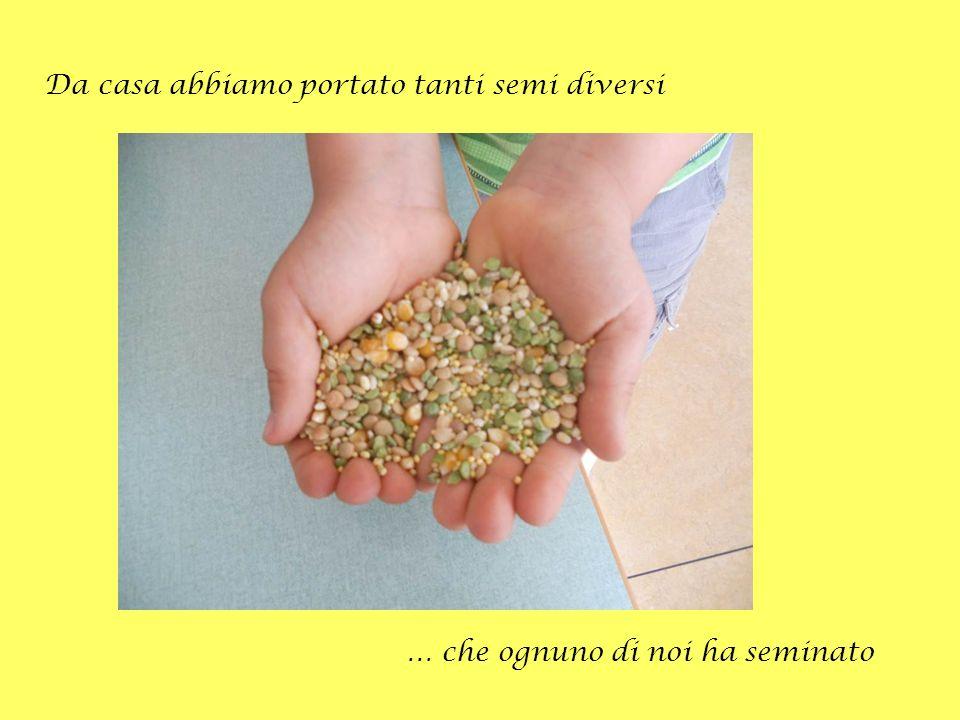 Da casa abbiamo portato tanti semi diversi … che ognuno di noi ha seminato