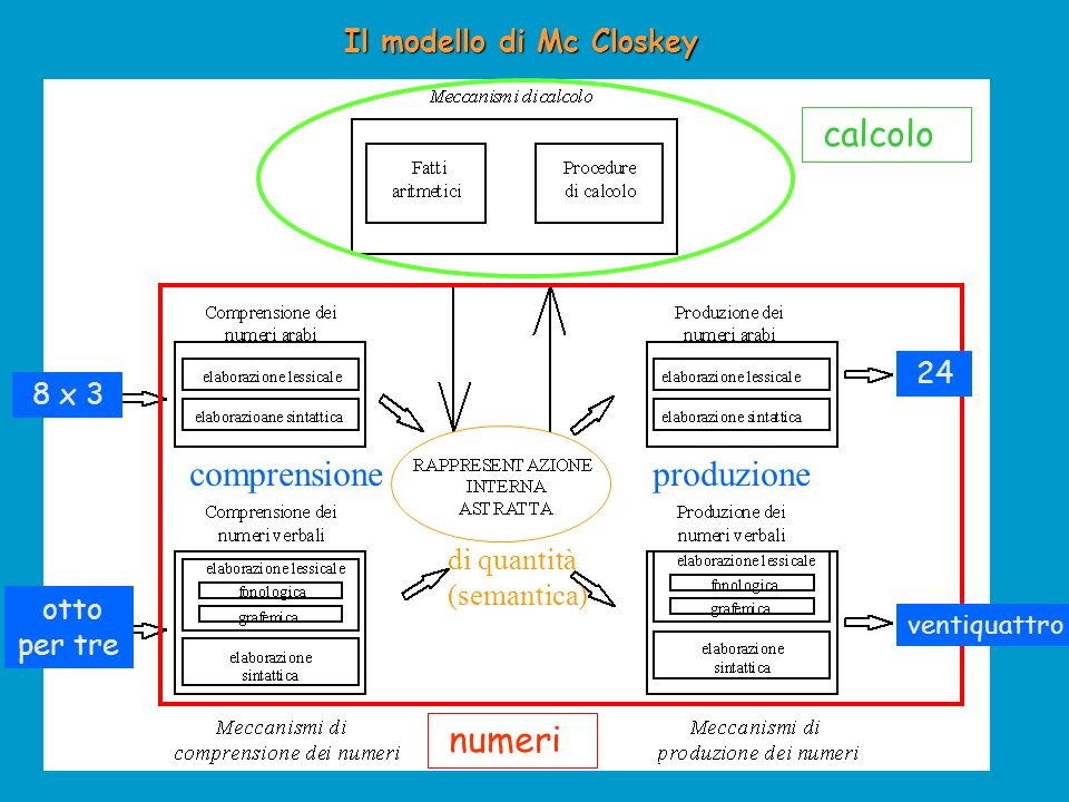 I tre sistemi funzionano in base a: Meccanismi Semantici (regolano la comprensione della quantità) astrazione dal codice specifico (3 = ) Meccanismi Lessicali (regolano il nome del numero) selezionano adeguatemente i nomi delle cifre (1 – 11) Meccanismi Sintattici (Grammatica Interna = Valore Posizionale delle Cifre) attivano il corretto ordine di grandezza di ogni cifra Esempio da u 13 3 1 la posizione cambia nome e semante