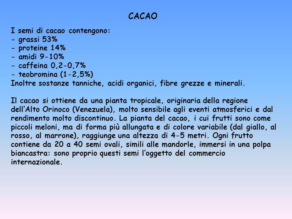 I semi di cacao contengono: - grassi 53% - proteine 14% - amidi 9-10% - caffeina 0,2-0,7% - teobromina (1-2,5%) Inoltre sostanze tanniche, acidi organ