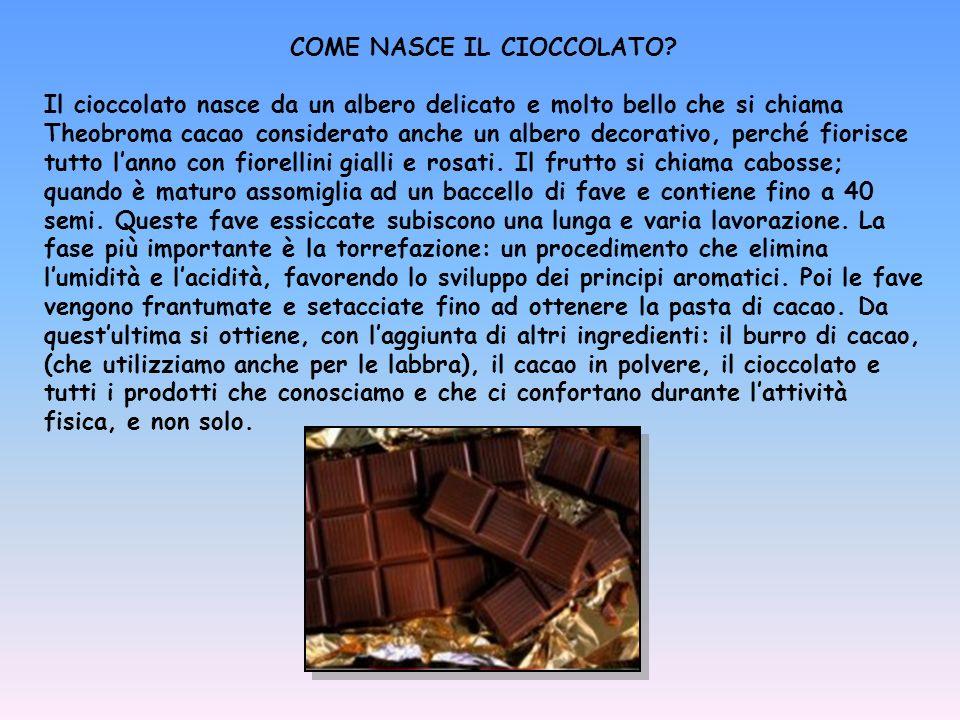 COME NASCE IL CIOCCOLATO? Il cioccolato nasce da un albero delicato e molto bello che si chiama Theobroma cacao considerato anche un albero decorativo