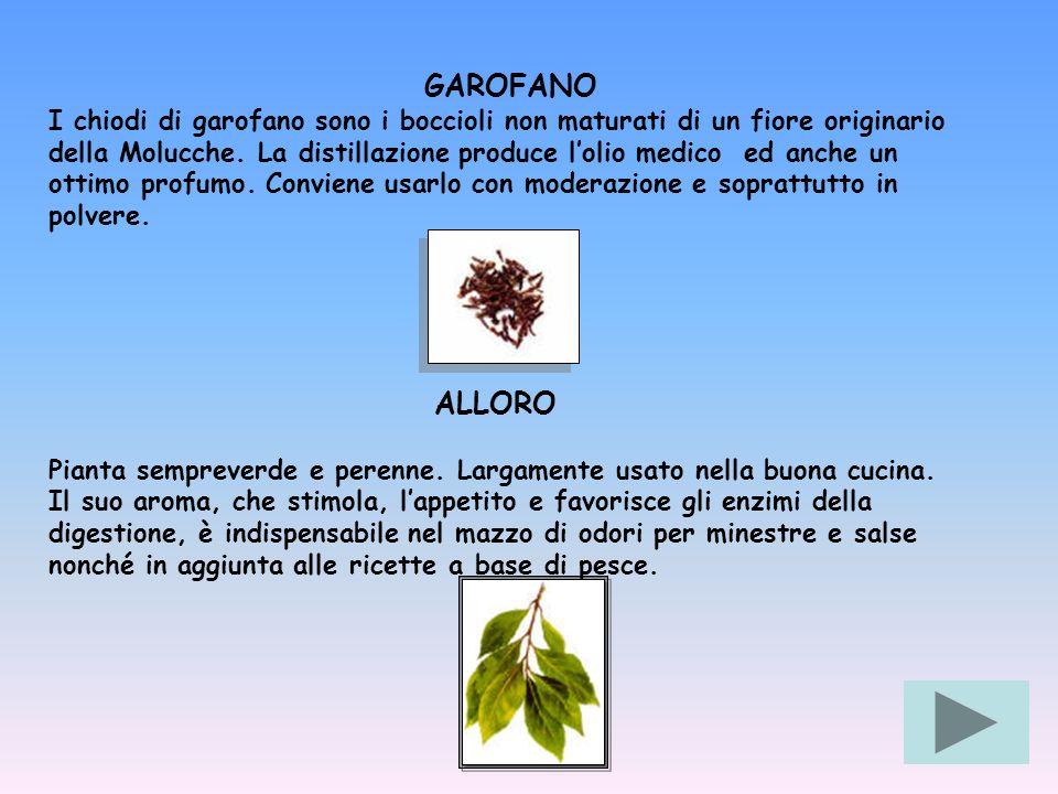 GAROFANO I chiodi di garofano sono i boccioli non maturati di un fiore originario della Molucche. La distillazione produce lolio medico ed anche un ot