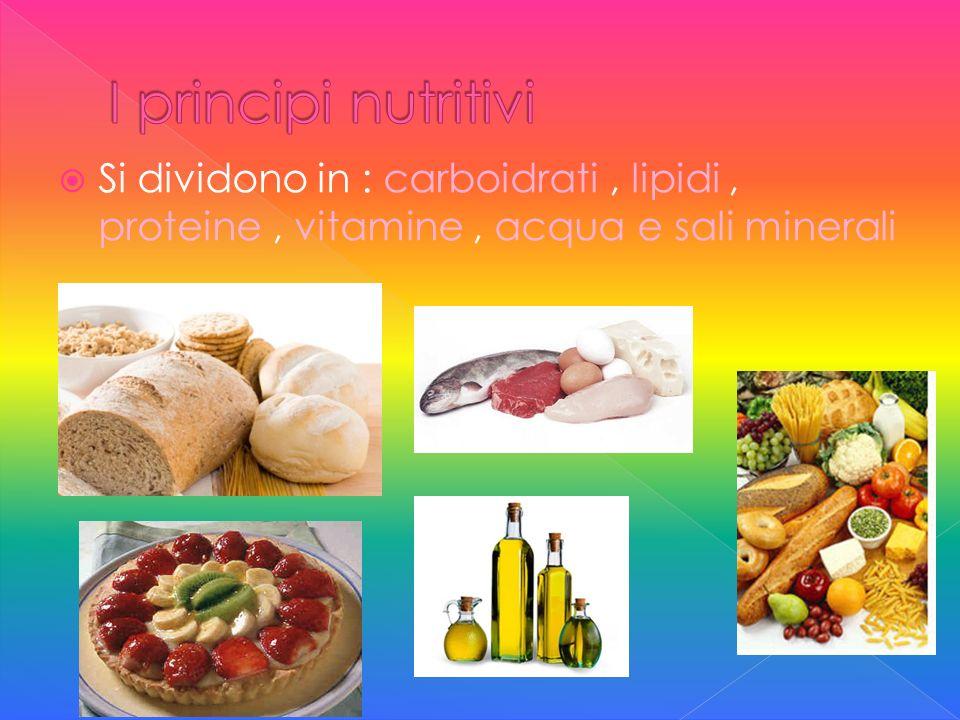 Si dividono in : carboidrati, lipidi, proteine, vitamine, acqua e sali minerali