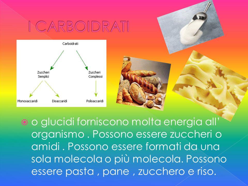 O grassi, riservano più energia allorganismo.Possono essere di origine animale o vegetale.