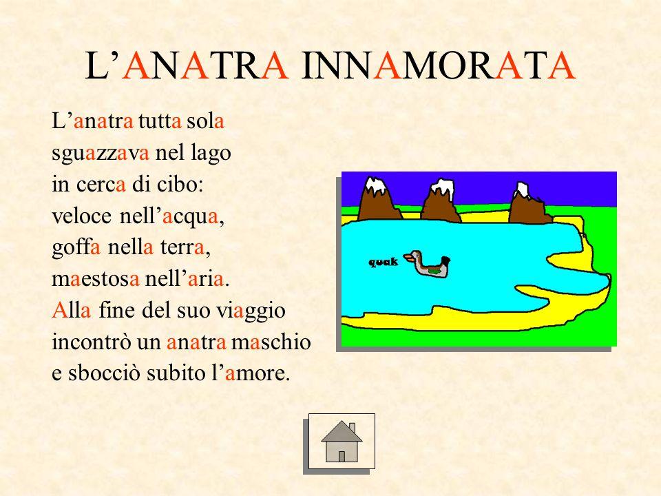 LANATRA INNAMORATA Lanatra tutta sola sguazzava nel lago in cerca di cibo: veloce nellacqua, goffa nella terra, maestosa nellaria.