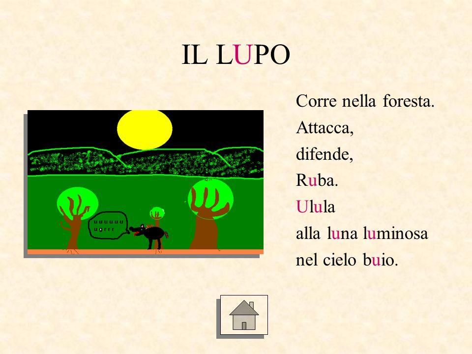 IL LUPO Corre nella foresta. Attacca, difende, Ruba. Ulula alla luna luminosa nel cielo buio.