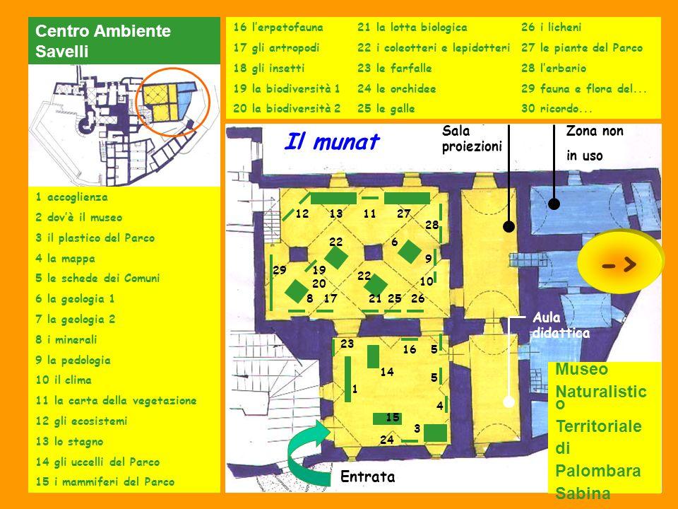 Zona non in uso Entrata Sala proiezioni Aula didattica 1 accoglienza 2 dovè il museo 3 il plastico del Parco 4 la mappa 5 le schede dei Comuni 6 la ge