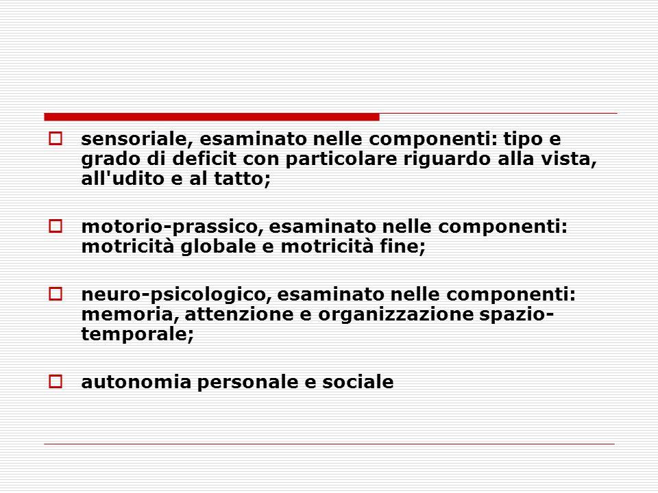 sensoriale, esaminato nelle componenti: tipo e grado di deficit con particolare riguardo alla vista, all'udito e al tatto; motorio-prassico, esaminato