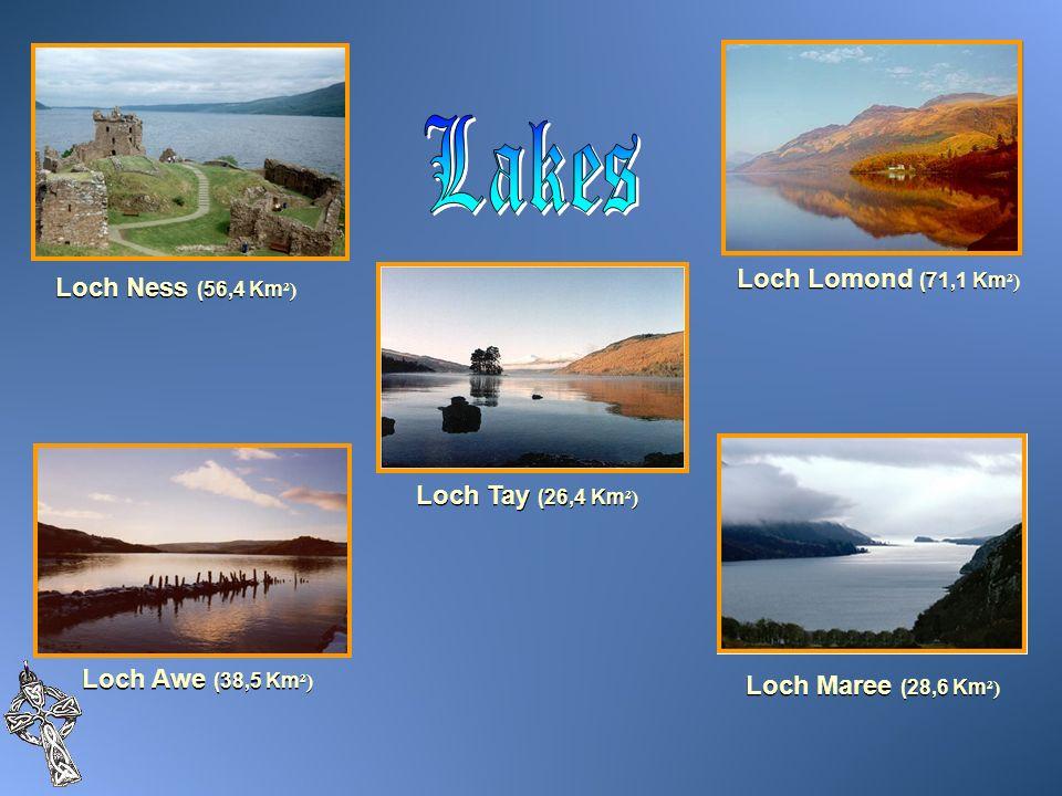 Loch Ness (56,4 Km ²) Loch Lomond (71,1 Km ²) Loch Tay (26,4 Km ²) Loch Awe (38,5 Km ²) Loch Maree (28,6 Km ²)