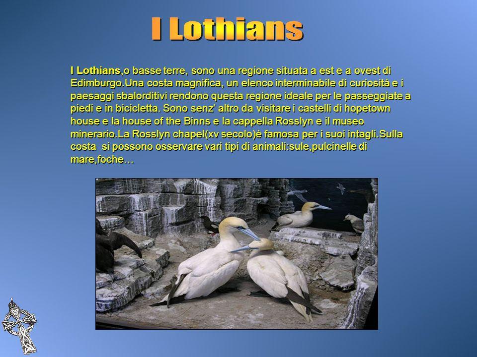 I Lothians,o basse terre, sono una regione situata a est e a ovest di Edimburgo.Una costa magnifica, un elenco interminabile di curiosità e i paesaggi