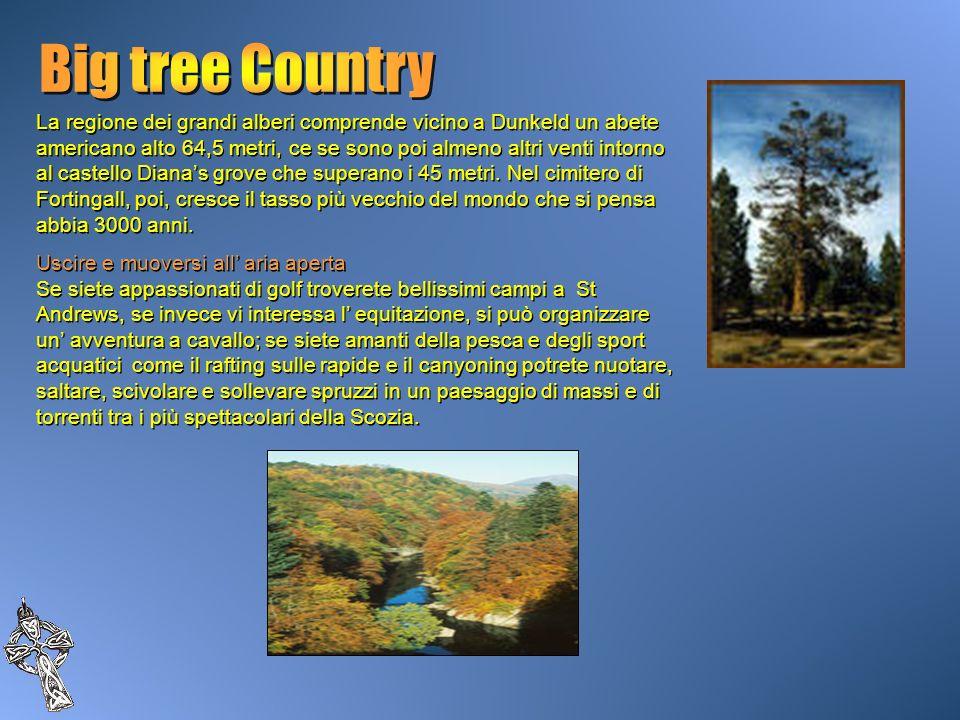 La regione dei grandi alberi comprende vicino a Dunkeld un abete americano alto 64,5 metri, ce se sono poi almeno altri venti intorno al castello Dian