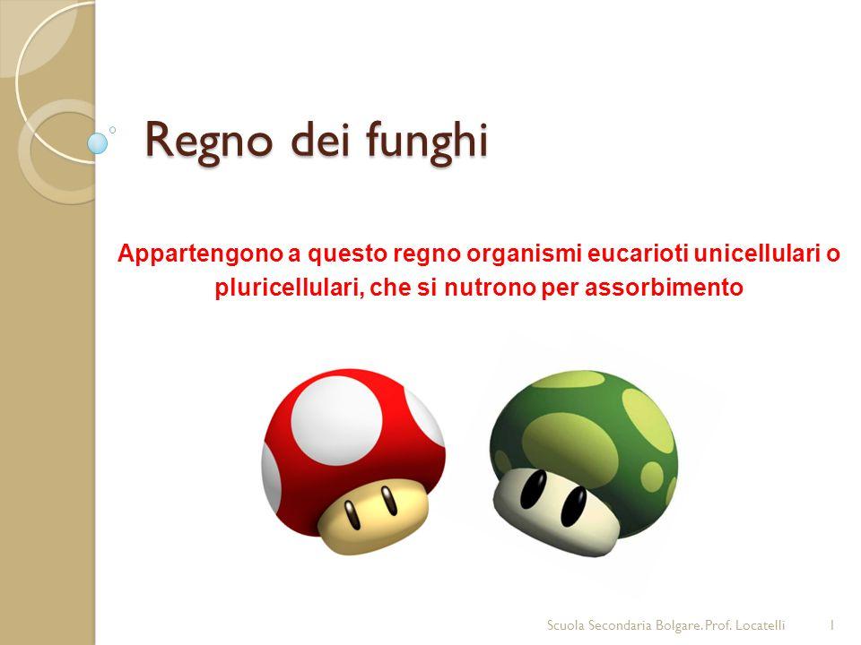 Regno dei funghi Appartengono a questo regno organismi eucarioti unicellulari o pluricellulari, che si nutrono per assorbimento 1Scuola Secondaria Bol
