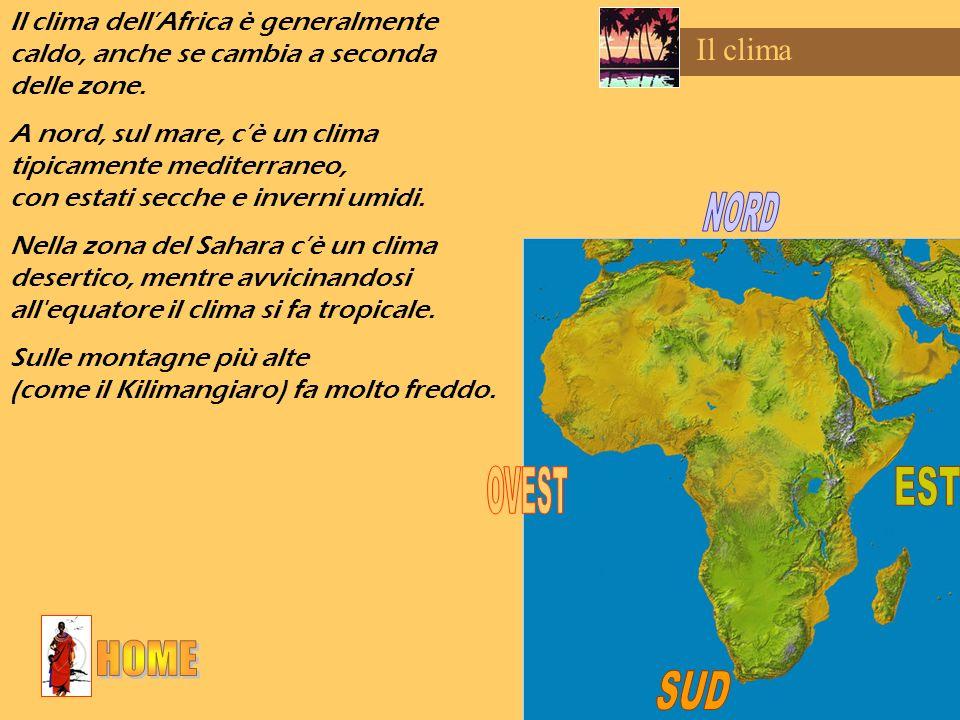 Il clima Il clima dellAfrica è generalmente caldo, anche se cambia a seconda delle zone. A nord, sul mare, cè un clima tipicamente mediterraneo, con e