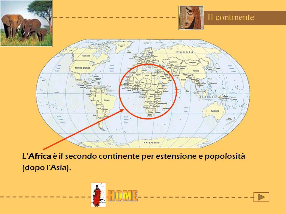Il continente L'Africa è il secondo continente per estensione e popolosità (dopo l'Asia).