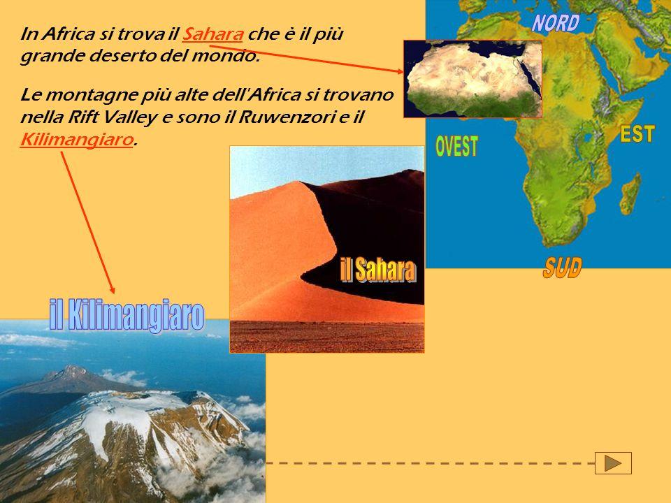 In Africa si trova il Sahara che è il più grande deserto del mondo. Le montagne più alte dell'Africa si trovano nella Rift Valley e sono il Ruwenzori