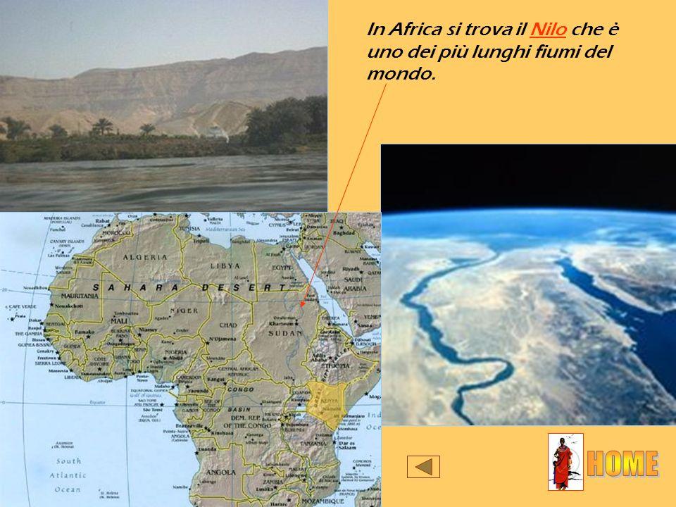 In Africa si trova il Nilo che è uno dei più lunghi fiumi del mondo.