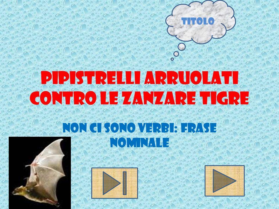 Pipistrelli arruolati contro le zanzare tigre Non ci sono verbi: frase nominale Titolo