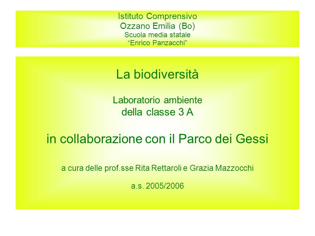 Istituto Comprensivo Ozzano Emilia (Bo) Scuola media statale Enrico Panzacchi La biodiversità Laboratorio ambiente della classe 3 A in collaborazione
