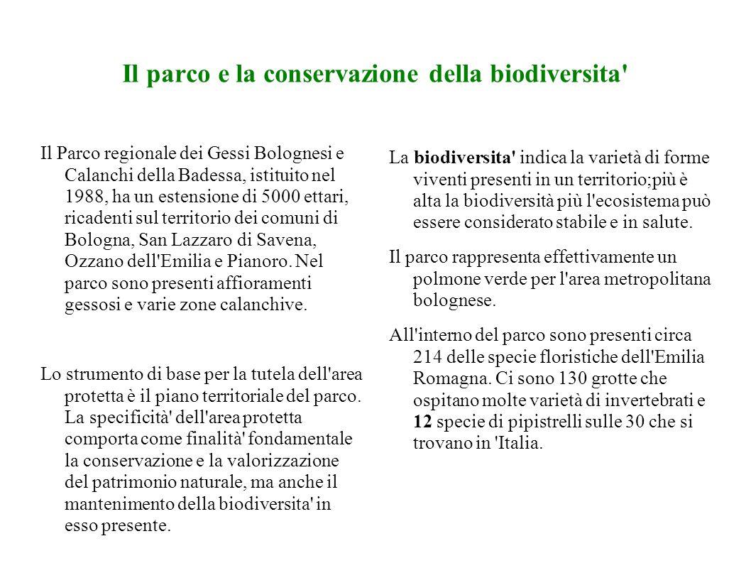 Il parco e la conservazione della biodiversita Il Parco regionale dei Gessi Bolognesi e Calanchi della Badessa, istituito nel 1988, ha un estensione di 5000 ettari, ricadenti sul territorio dei comuni di Bologna, San Lazzaro di Savena, Ozzano dell Emilia e Pianoro.