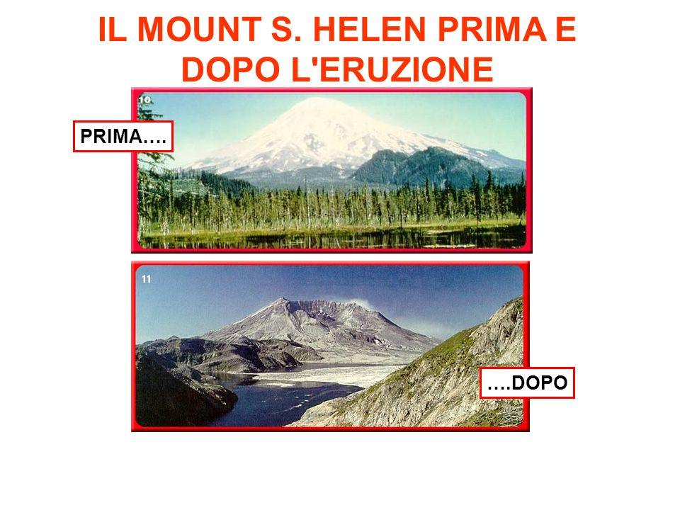 IL MOUNT S. HELEN PRIMA E DOPO L'ERUZIONE PRIMA…. ….DOPO