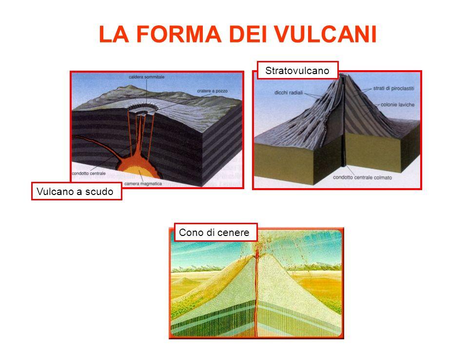 LA FORMA DEI VULCANI Vulcano a scudo Stratovulcano Cono di cenere